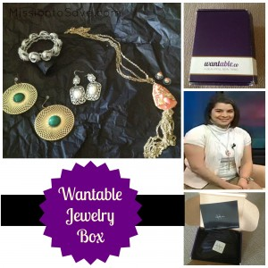 Wantable Jewelry Box