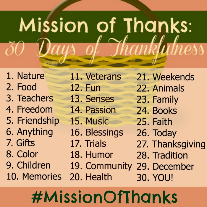 Join us for 30 Days of Thankfulness with these Thankful Prompts.  Be sure to tag your social media responce with #missionofthanks
