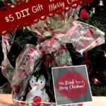 Cute and frugal DIY gift idea : We Wash You a Merry Christmas! See hot to on MissiontoSave.com