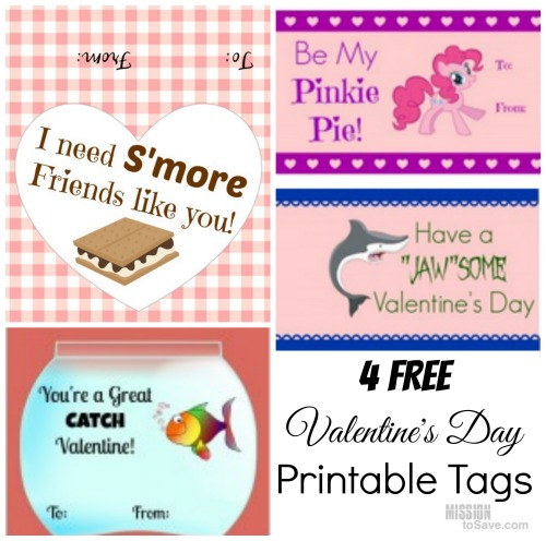 4 Free Printable Valentineu0027s Day Tags For Su0027Mores, Goldfish And Fruit  Snacks   Mission: To Save