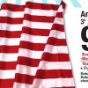 American Flag for Just $0.99 at Menards (After Rebate)