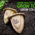 #GrowColumbus Free Seed Pods – Get Them on Tuesday 5/20