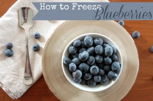 How-To-Freeze-Blueberries-1024x682