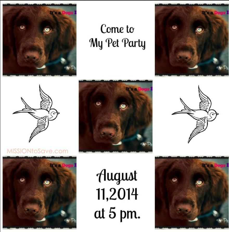 dog invite