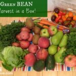 Green BEAN Delivery Fresh Produce on Your Doorstep (+ $15 Off First Delivery) #review