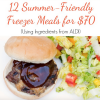 12 Summer Freezer Friendly Meals from Aldi (Get Cookin'! Buy The Meal Plan Today!)