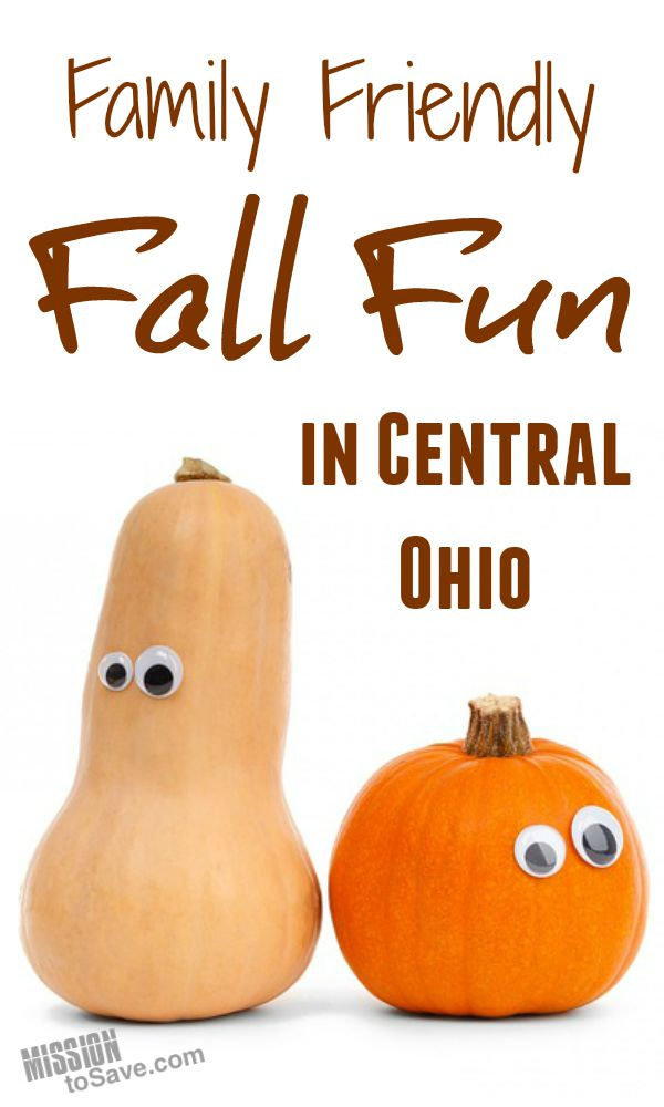See my top 5 picks for Family Friendly Fall Activities in Central Ohio.