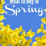 Wondering what to buy in spring to get the best savings? Check out my list of ways to save in the spring.